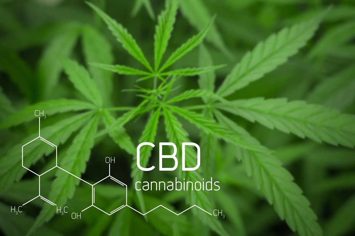 If you're considering trying out medical CBD and want to order it online, check out this guide which breaks everything you need to know...