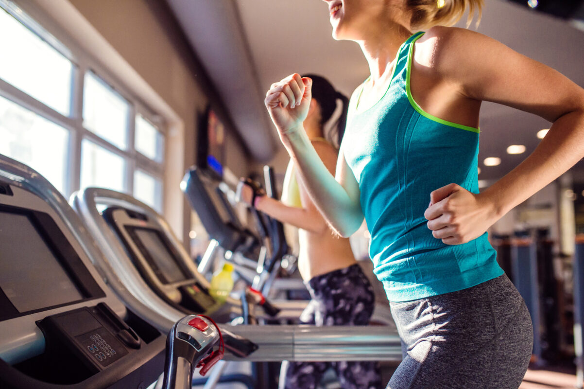 full body workouts for beginners