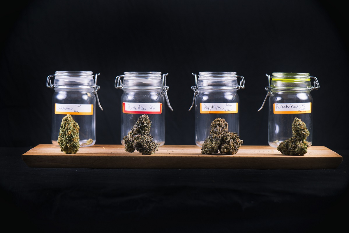 If you are wondering how to choose the best marijuana dispensary for you, then you won't want to miss our comprehensive guide.