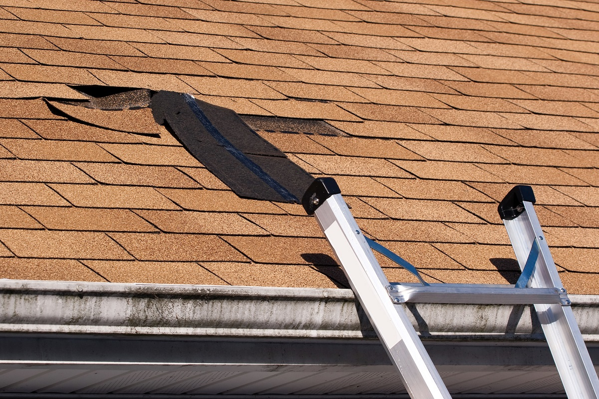Roof damage can be costly, so what can you do to prevent it? This guide explains 5 effective ways to prevent roof damage.