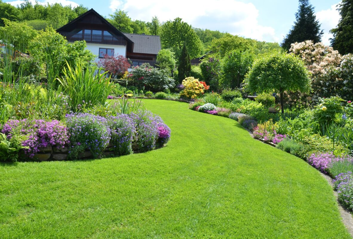 Curb appeal can help you sell your house but there's only so much you can do to the actual structure. Check out these curb appeal plants for an added bonus!