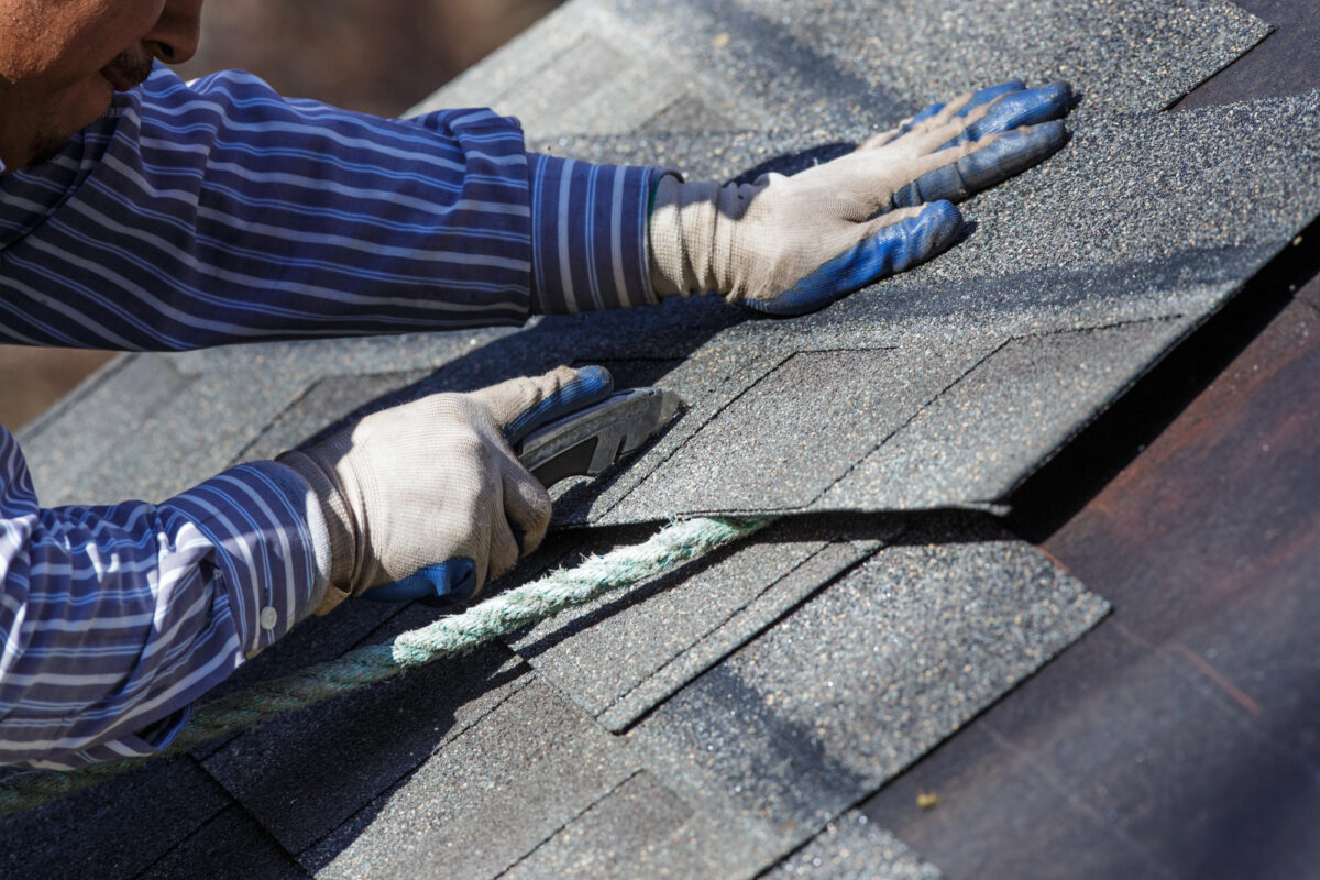 Before you let a roofing company loose onto your roof, you need to check they're up to the job. Here are the questions you need to ask.