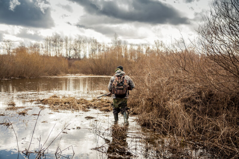 Are you going hunting for the first time? If so, you need to get the basic tips for hunting down first. Click here to learn more.