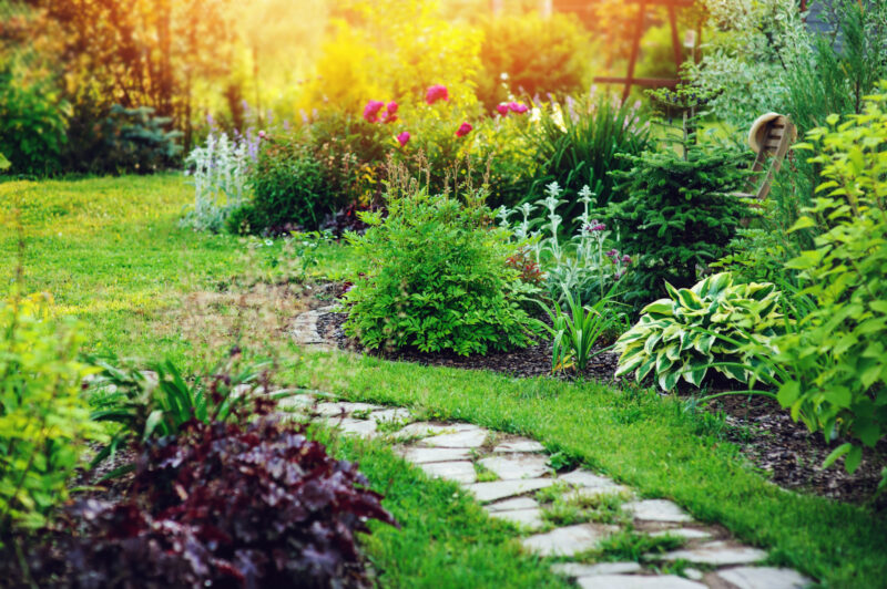 Do you want your front yard to be the coolest on the block? Here are a few landscaping tips that will save you money and impress neighbors.