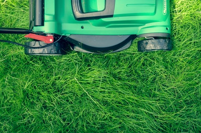 Have tens of hundreds of pesky weeds in your lawn? We'll help with your weed prevention and provide you tips to clear your lawn of these pests.