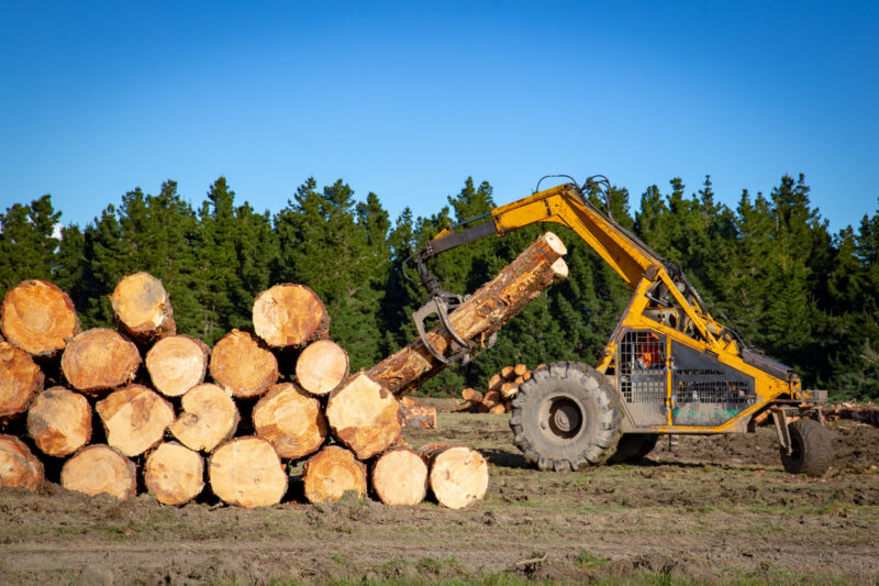 Are you starting a timber merchant business? This guide will talk you through everything you need to know about setting up your company.